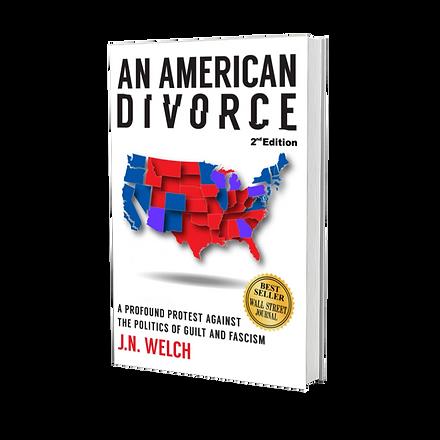 An American Divorce Book JN Welch.png