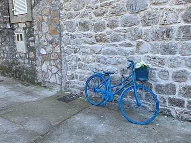 UNADJUSTEDNONRAW_thumb_1157.jpgblue bike