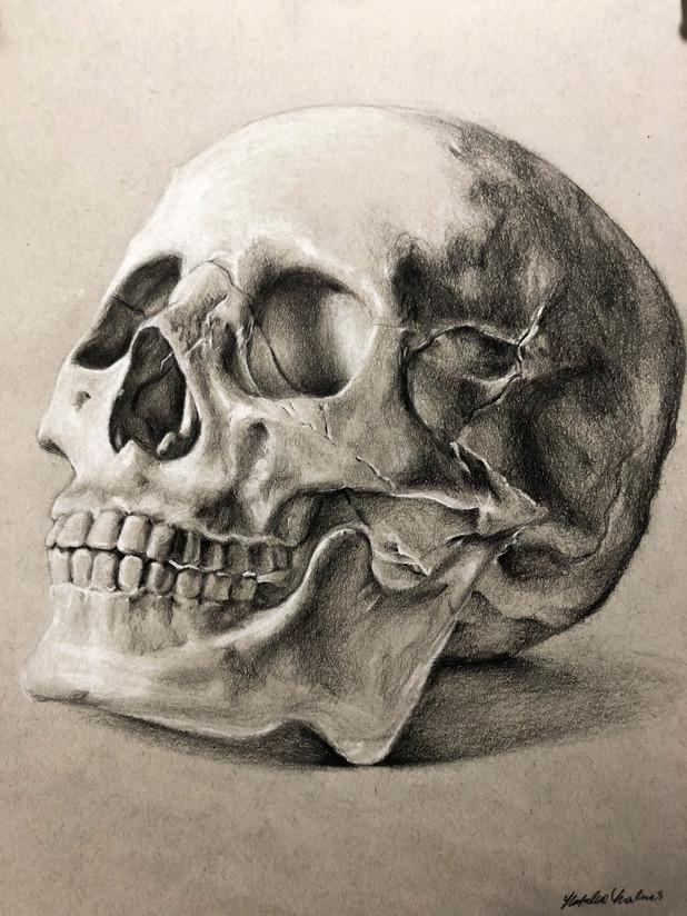 head skull sketchbook_edited.jpg