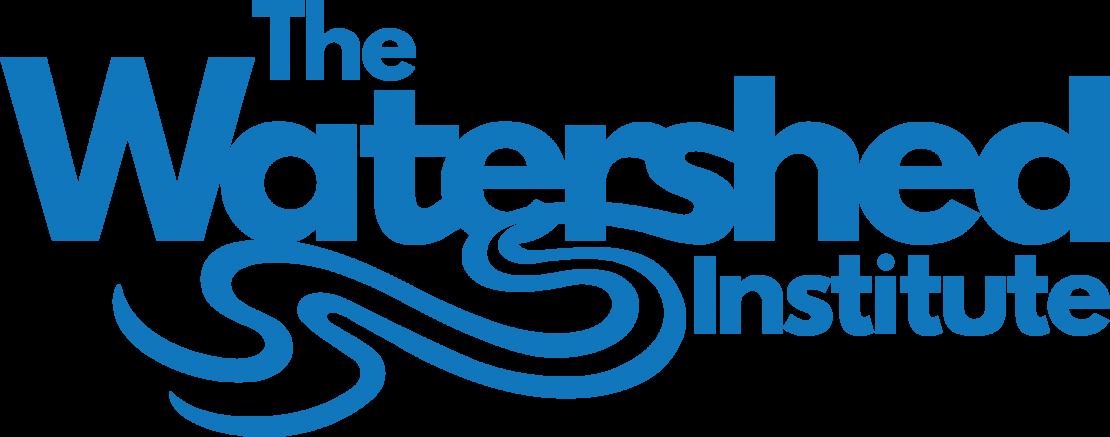 WSI-Logo-blue_no_circle-1110x437.png