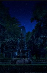 Jardim Botânico, Fonte e Cristo (Rio de Janeiro), 2016