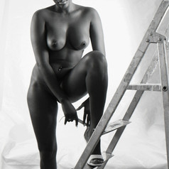 Kelly and the ladder, 2012