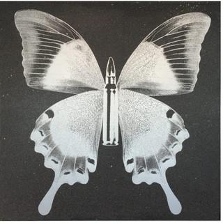 Bullet-Fly, 2015