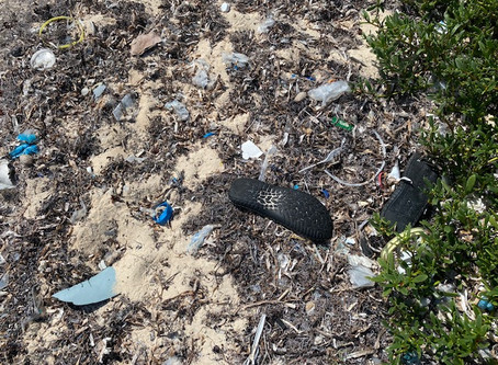 Rethink Plastic Challenge