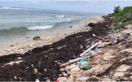 International Coastal Cleanup Day - September 21, 2019