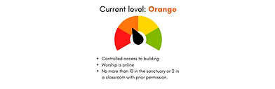COVID Decision meter - Orange.png