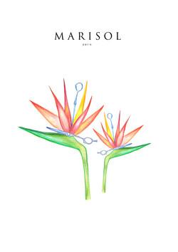 Marisol Paris / Le Bon Marché