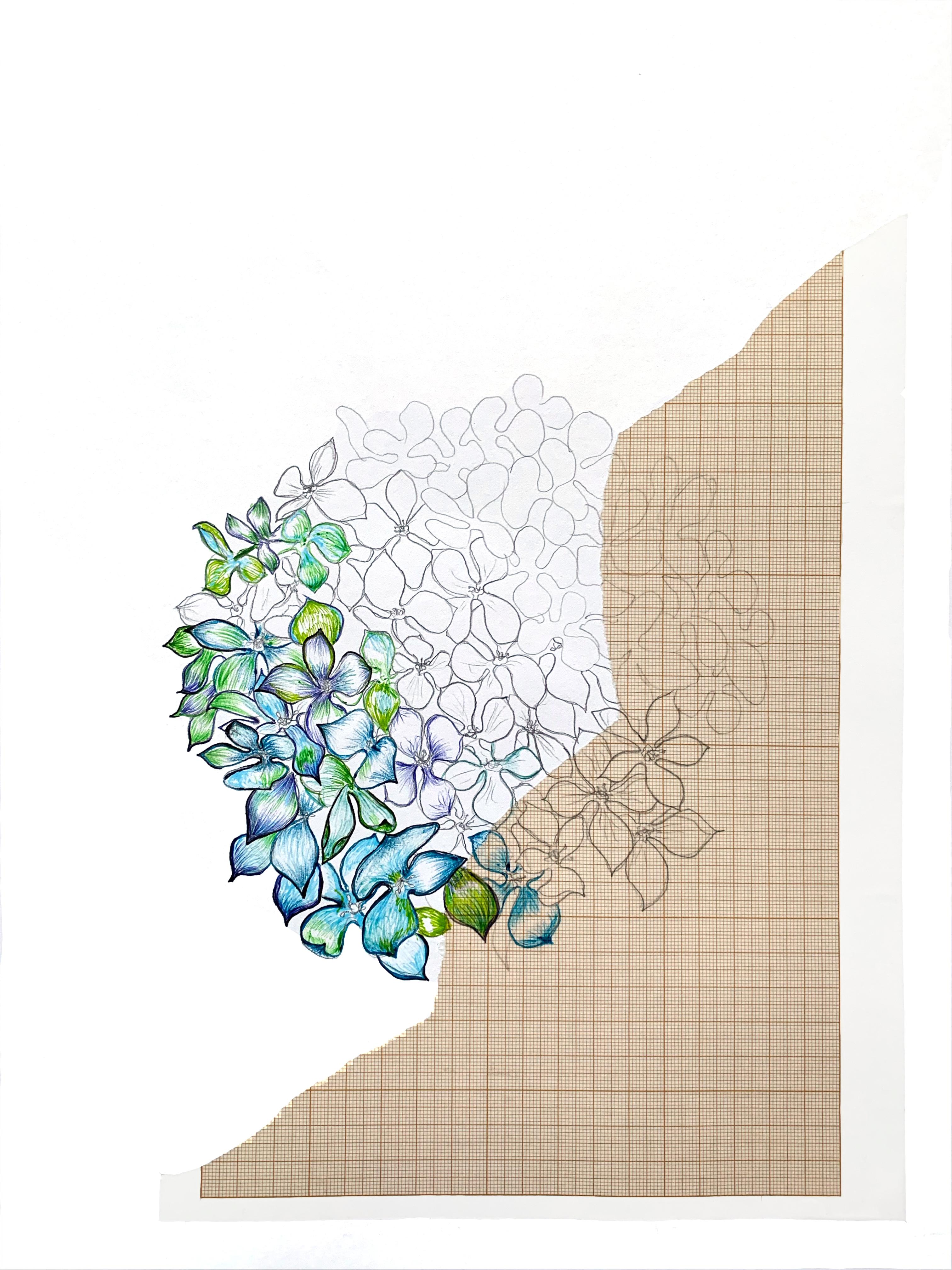 Non-linear Hydrangea I