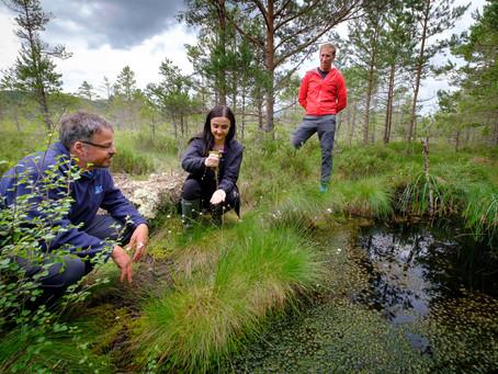 Johnnie Walker teams up with RSPB Scotland to save vital peatland