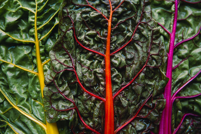 Organic Rainbow Chard.jpg