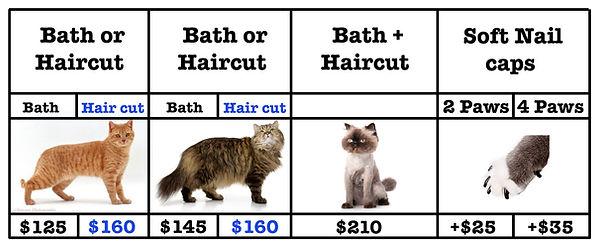 mobile cat prices  2 new 2021 copy.jpg