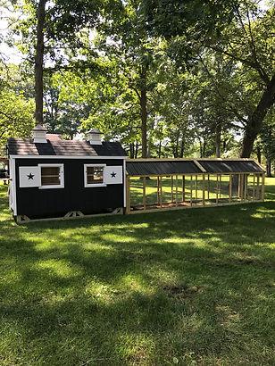 chicken coop and 2 runs