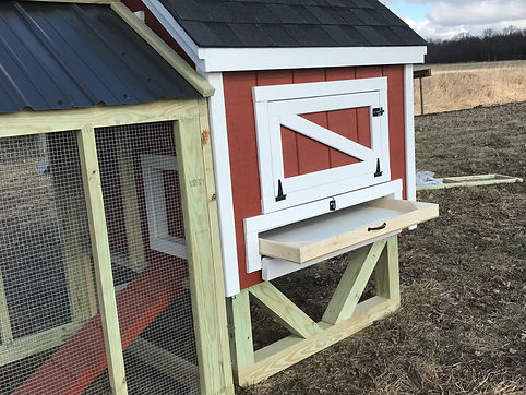 chicken coop and litter tray