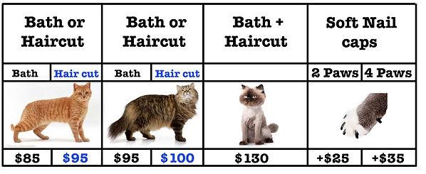 cat prices new salon 2021.jpg