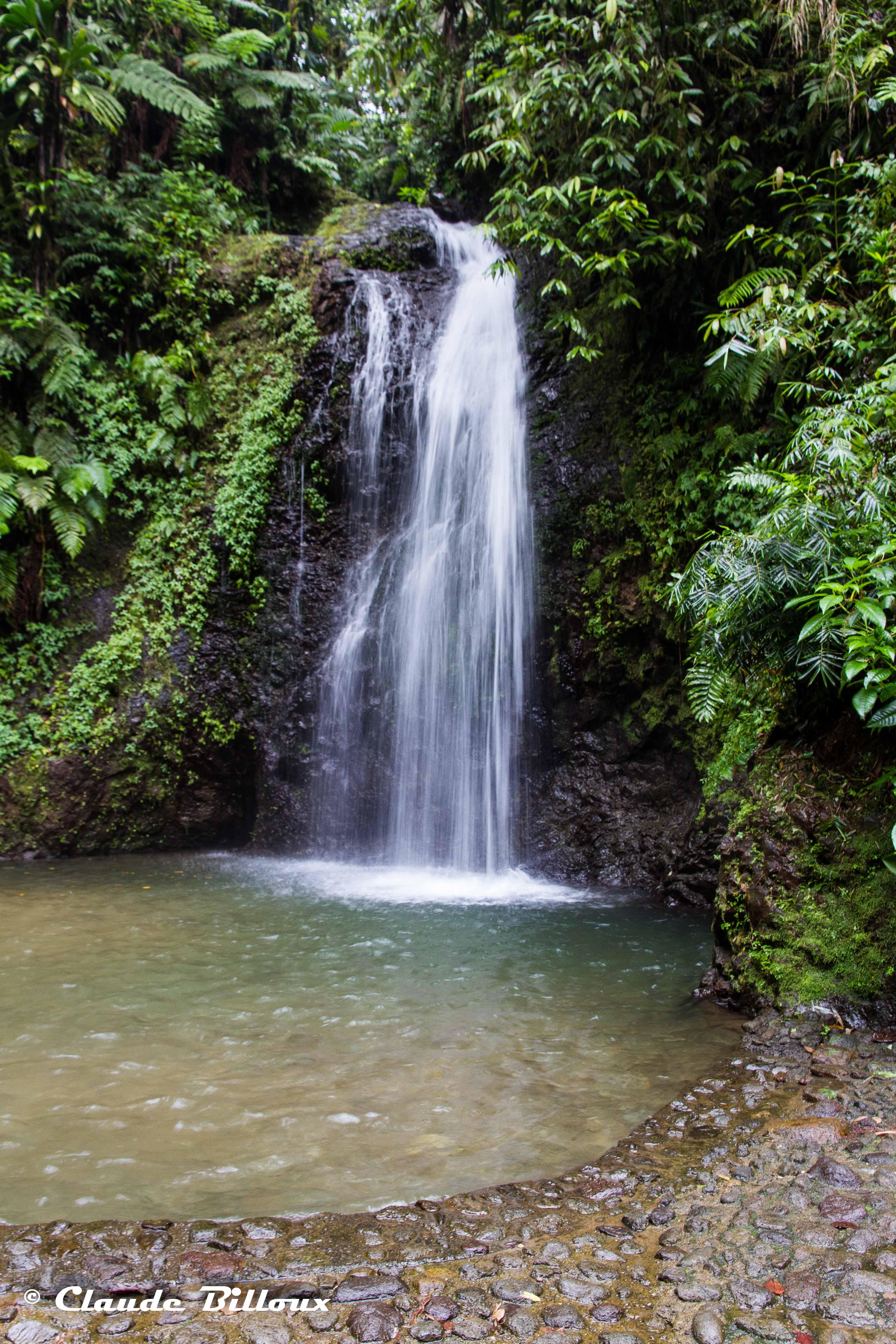 Martinique_0631.jpg