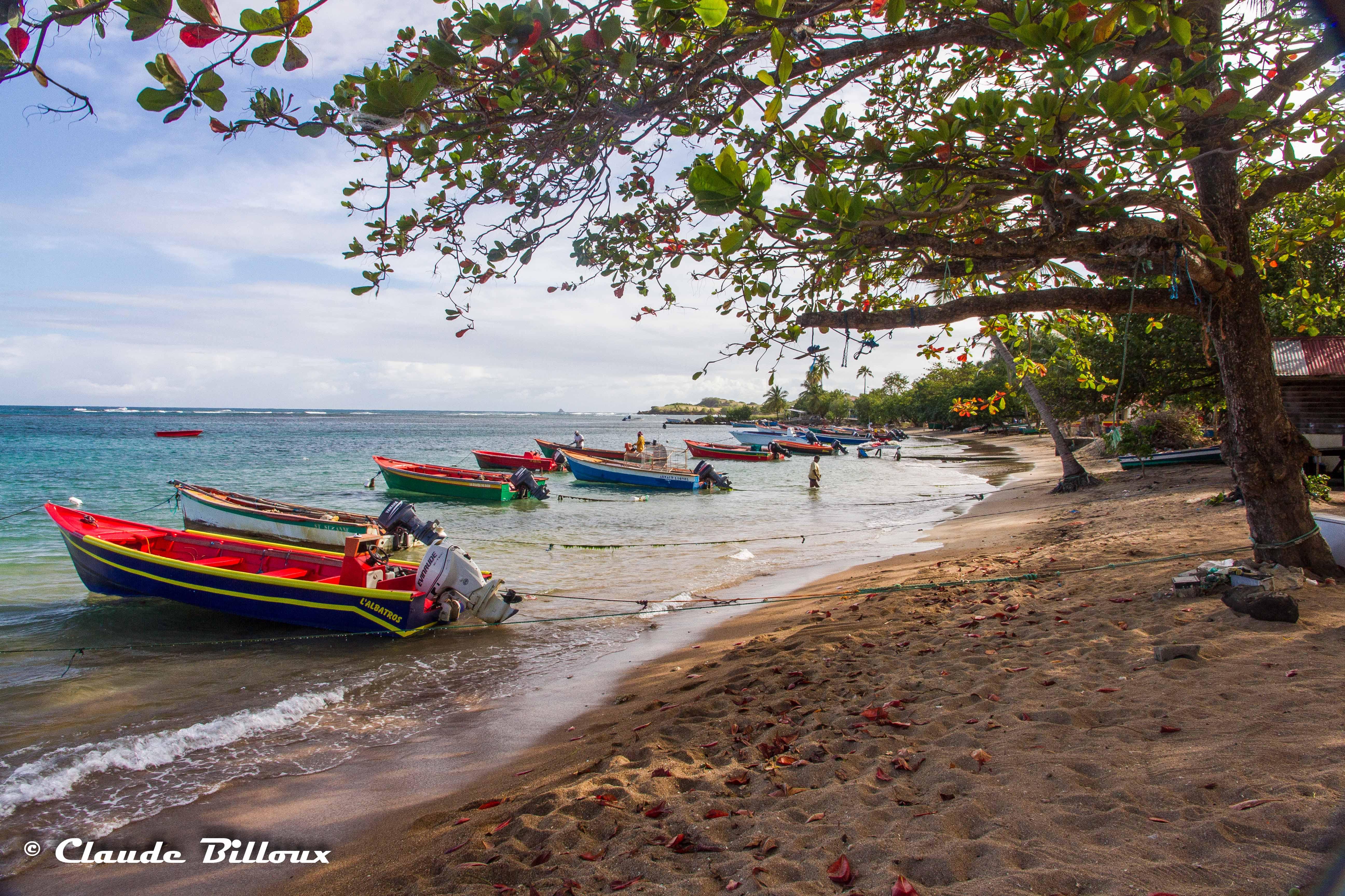 Martinique_0296.jpg