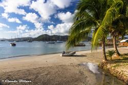 Martinique_0230.jpg