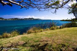 Martinique_0191.jpg