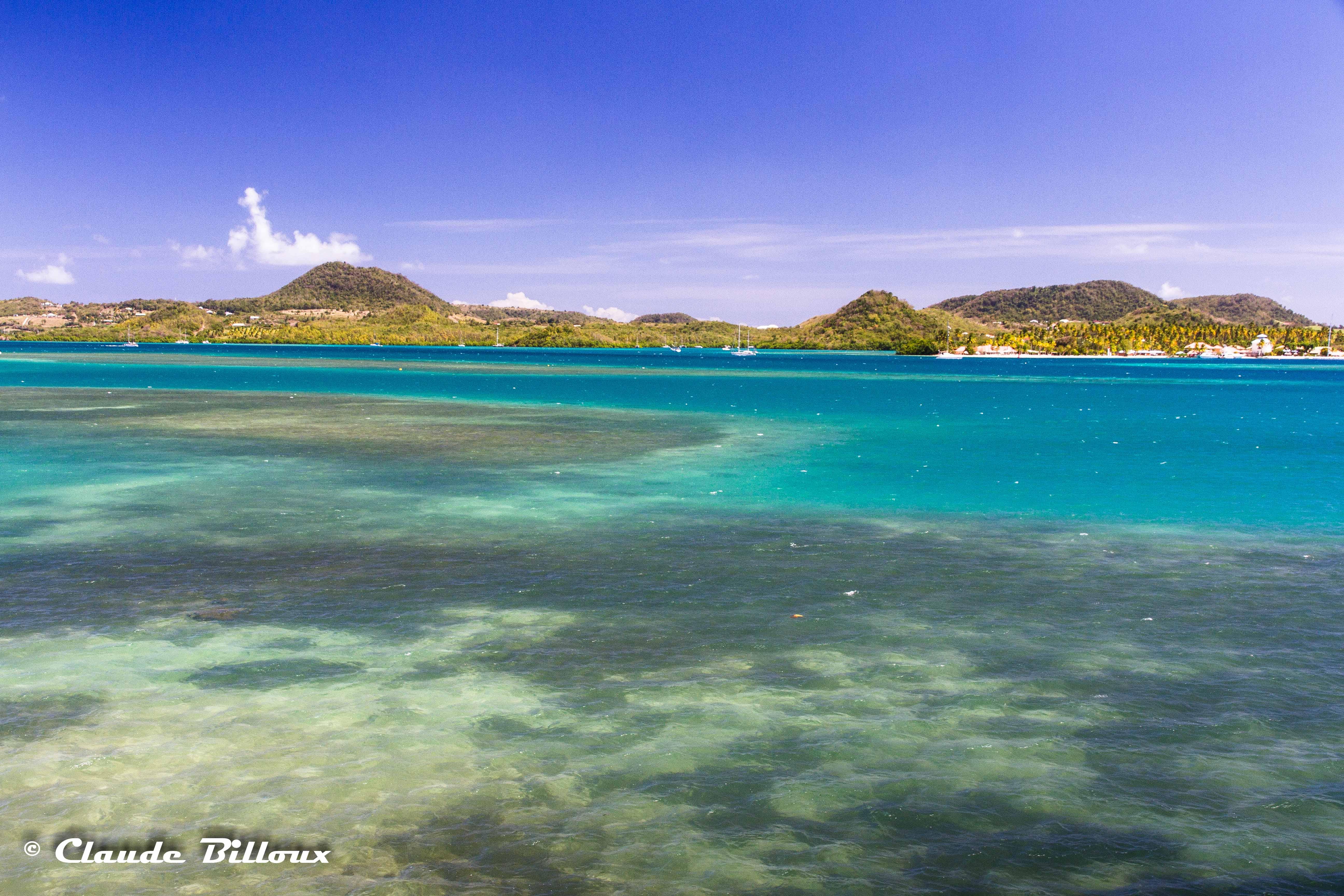 Martinique_0184.jpg