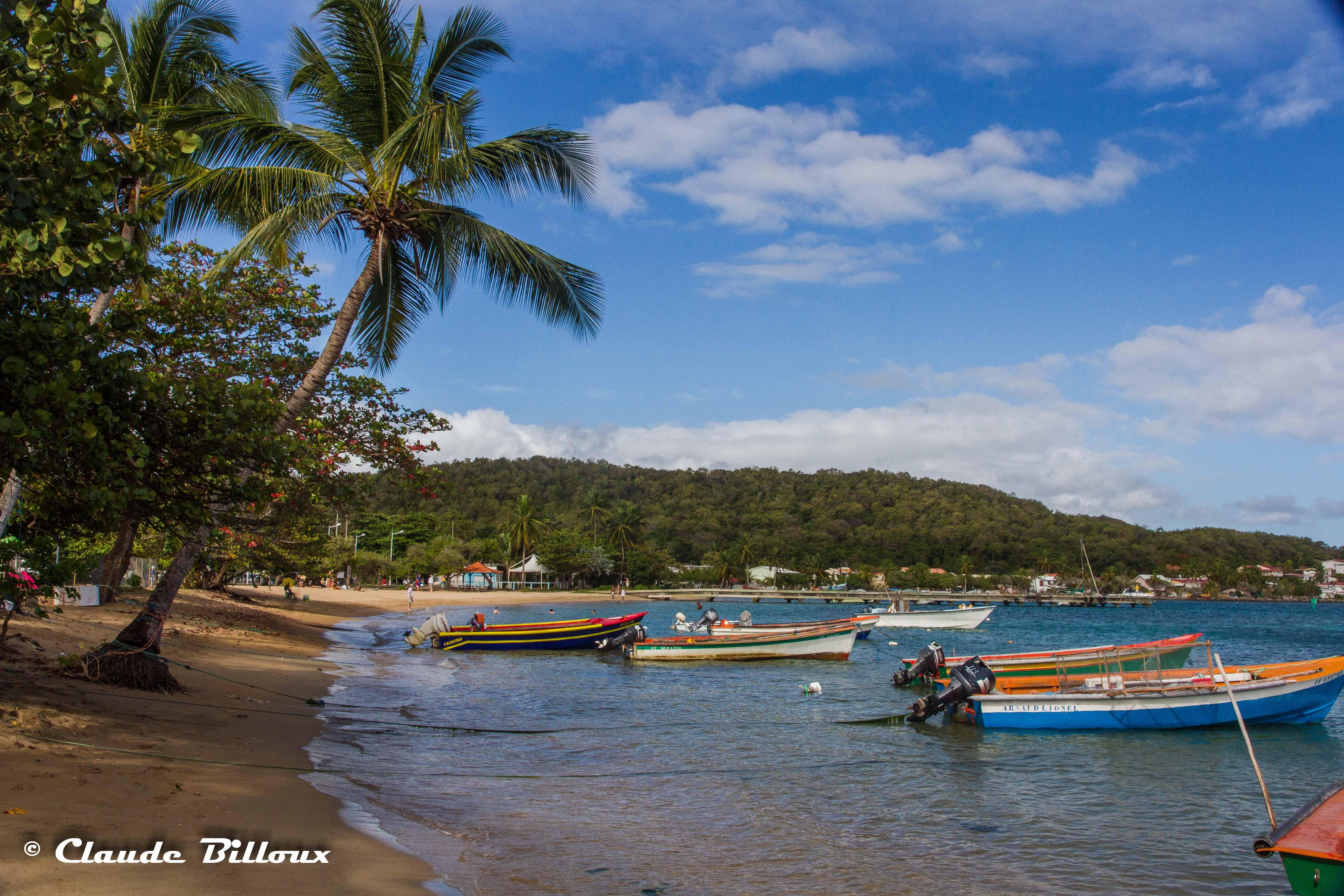 Martinique_0303.jpg