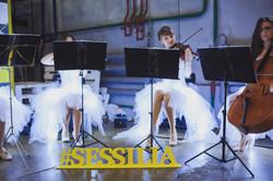 sessilia, сесилия, сессилия