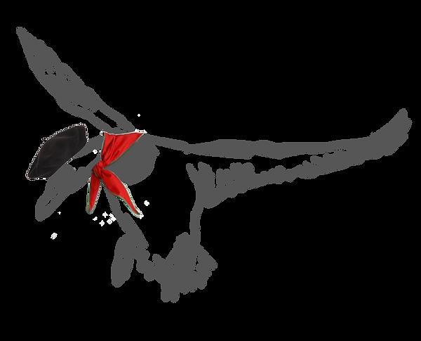 Rone-logo-2018-bis.png