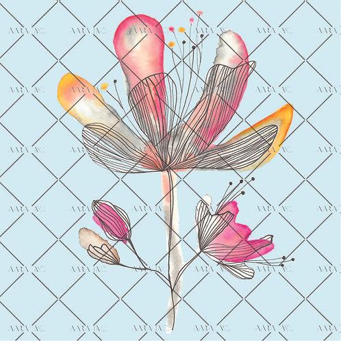 Delicate Hibiscus-NT1910004