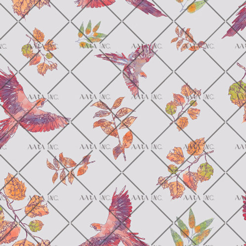 Colourful Parrots-APGB02A