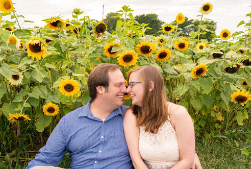 Indianapolis Wedding Photography - couple kissing in sunflower field