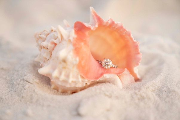 Engagement ring in a sea shell