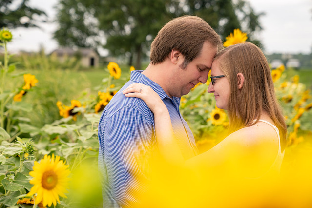 Indianapolis Wedding Photography - couple forehead to forehead