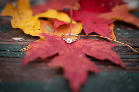 Detail fall engagement ring