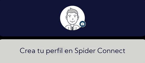 Crea tu perfil en Spider Connect