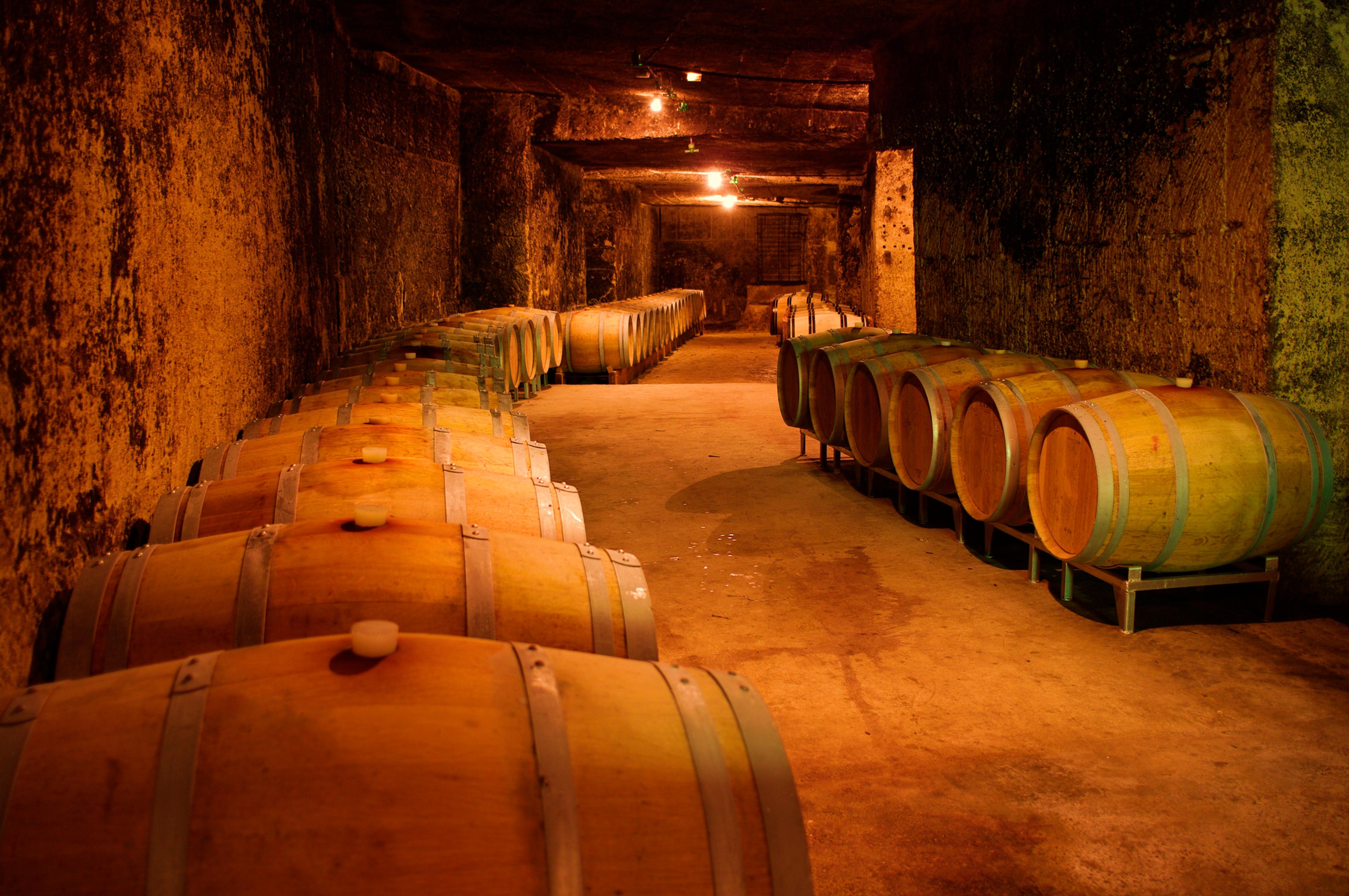 Visite des caves / Cellars tours
