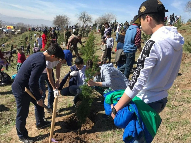 FLEX alumni helping the UNDP and the Mayor of Dushanbe plant trees in a park.