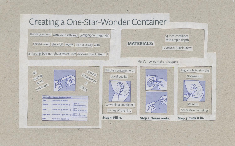 Wonder Container