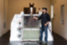 Cold Saltwater Equine Spa - Horse Icing