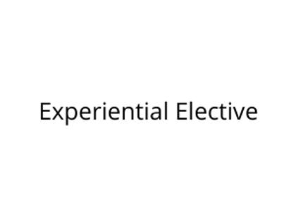 Experiential Elective
