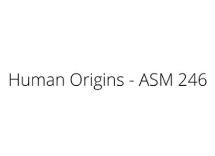 Human Origins - ASM 246