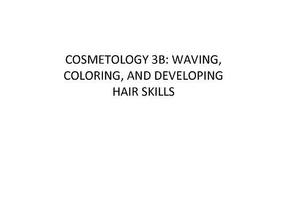 Summer School Cosmetology 3b: Waving, Coloring & Developing Hair Skills