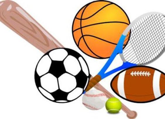 Advanced Physical Education 1 & 2