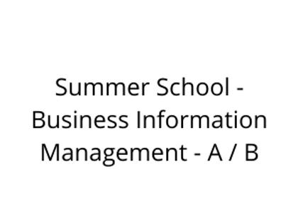 Summer School - Business Information Management - A / B