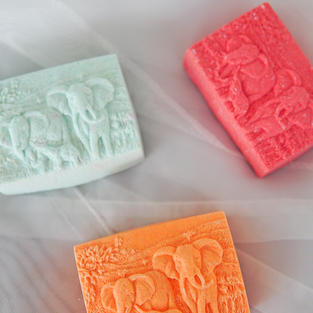 elephant family (assorted scent)