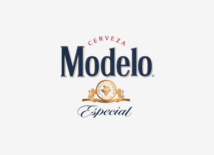 MODELLO_WEB