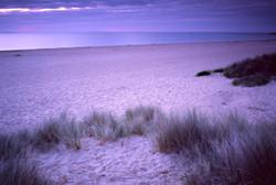 Dawn, Studland, Cornwall