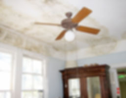 Commercial and residential spray foam insulation helps reduce moisture and mold in your home or office