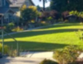 lawn care central point oregon, central point oregon lawn maintenance, plant trimming central point oregon, yard care central point oregon, lawn fertilizing central point oregon