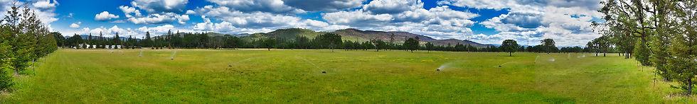 Meadow Panoramic sm.jpg