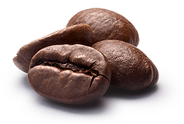 fresh roasted coffe beans for sale with free shipping.