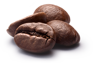 Fresh roasted coffee beans shipped to your home or office for free.